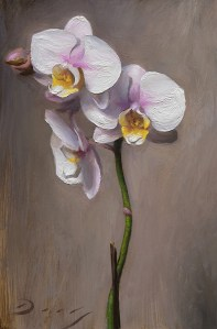 """Joseph Q. Daily """"Pink Orchid - Oct 2017"""" 9x6 oil $850."""