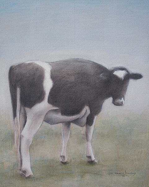 "Edd Tokarz Harnas ""The Other Cow"" 10x8 graphite/acrylic on canvas gallery wrapped $170."