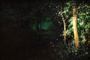 "David Higgins ""Edge of Woods"" 20x30 oil $2,500."