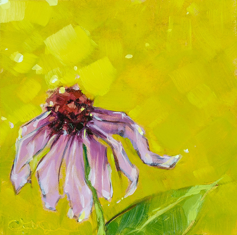 "Christina Johnson ""Coneflower in Summer Light"" 4x4 oil $75."