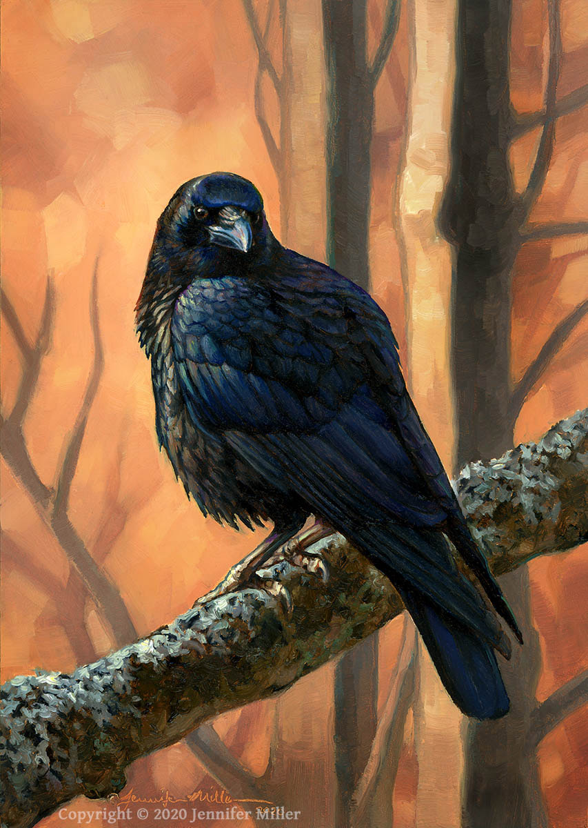 "Jennifer Miller ""Crow Portrait"" 7x5 oil $375. SOLD"