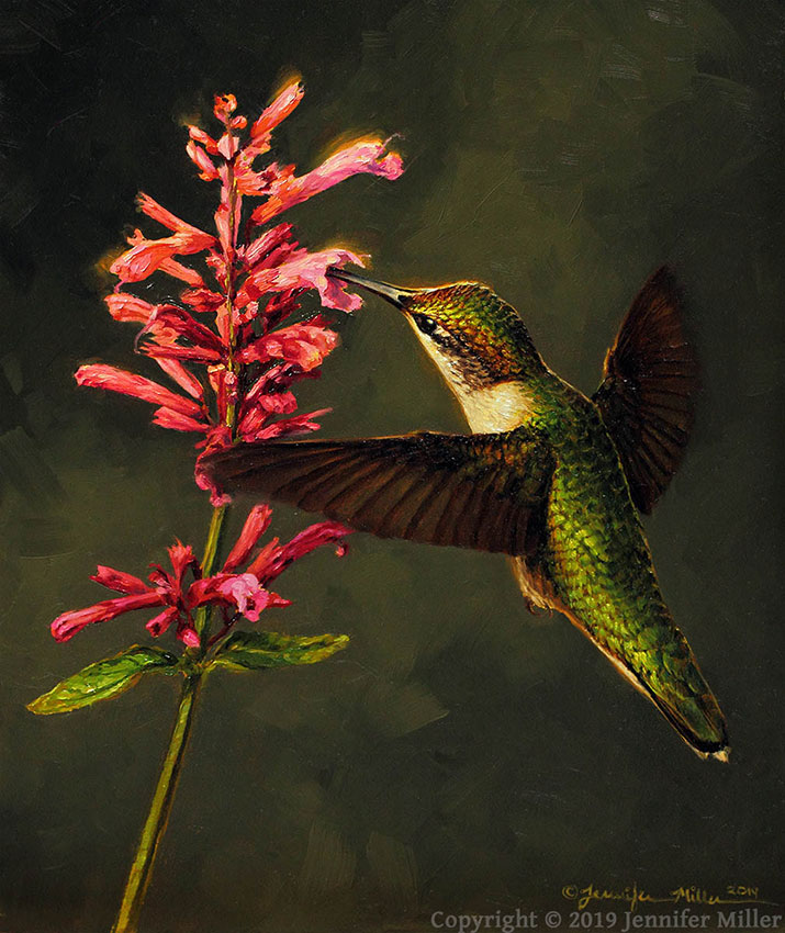 "Jennifer Miller ""Fine Dining - Ruby-Throated Hummingbird"" 10x8 oil $850. SOLD"