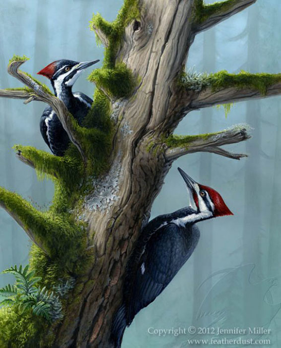 "Jennifer Miller ""The Forest's Benefactors"" 20x16 acrylic $2,200."