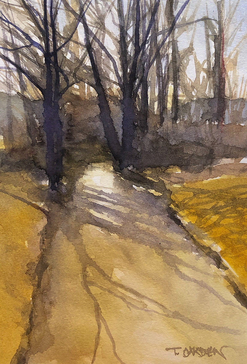 """Terry Oakden """"Shadows without Bloom"""" 8x6 watercolor $100. unframed"""