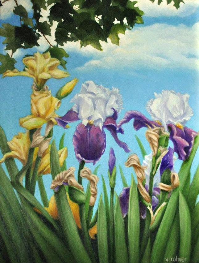 "Valorie Rohver ""Iris Garden"" 14x11 oil $750."