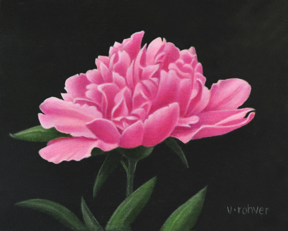 "Valorie Rohver ""Pink Peony Blossom"" 6x8 oil $295."