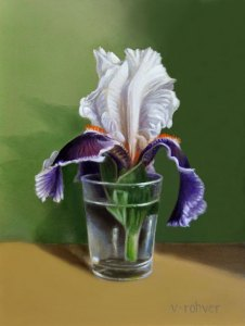 "Valorie Rohver ""The Special Iris Blossom"" 8x6 oil $295."