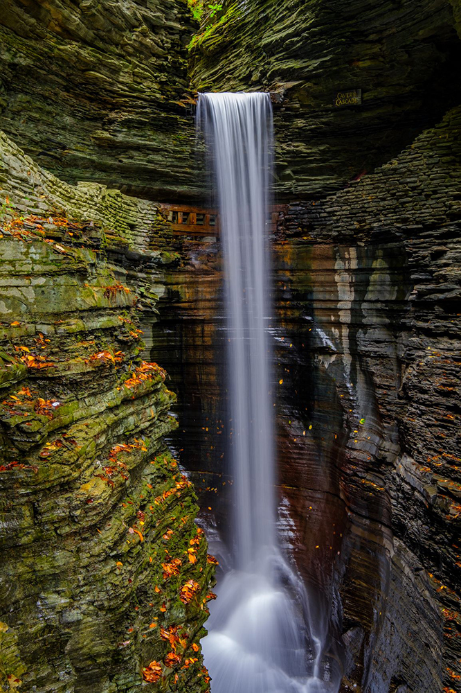 "Chris Walters ""Watkins Glen"" inquire for available ordering options"