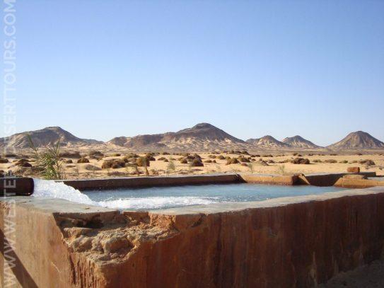 Cold spring in Bahariya Oasis