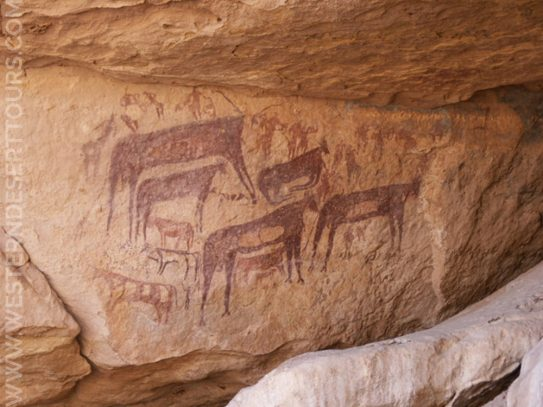 Petroglyphs in the Gilf Kebir National Park