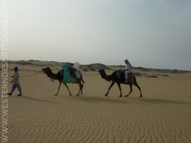 Riding camels in the Western Desert of Egypt