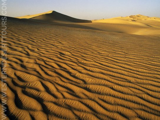 Sand dunes in the Great Sand Sea 1