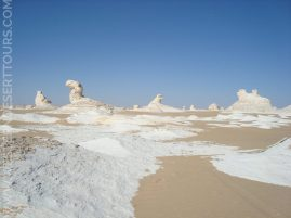 The White Desert's sculpture garden