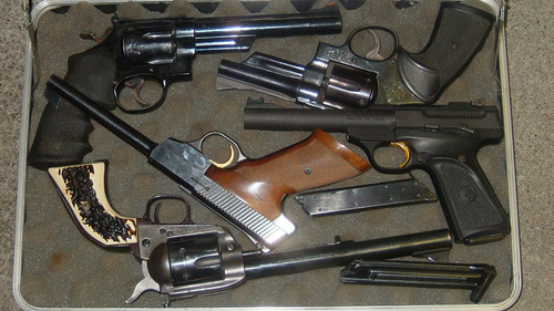 guns SC Senate To Gut Second Amendment?