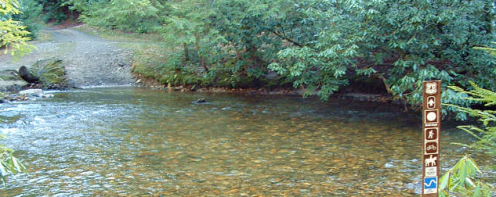 Mills River Area