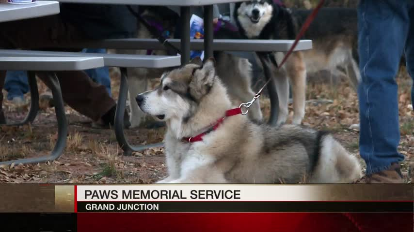 PAWS Memorial Service Allows Locals to Say One Last Goodbye_30923583