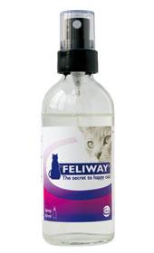 Feliway spray eller diffuser er fin for å få katten trygg og avslappet