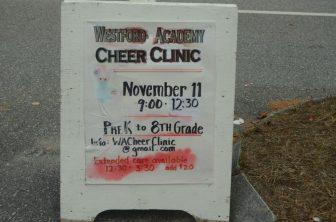 (WT - Notes) Cheer Clinic 11Nov14