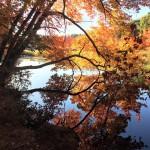 East-Boston-Camps-photo-1-adult-Jason-Macres-150x150