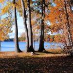 forge-pond-view-2-Doug-Pederson-adult-150x150