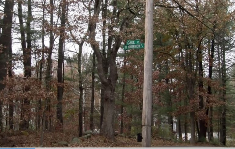 A parcel along Gage Lane is under consideration for the dog park site. WESTFORDCAT PHOTO BY PATTY STOCKER