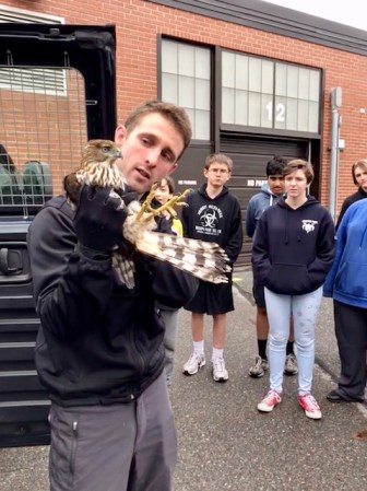 Westford Animal Control Officer Danny Hurd brought the Cooper's Hawk to the Nashoba Valley Technical High School on Oct. 3 to show it to the students in the Veterinary Assisting program. COURTESY PHOTO
