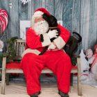 Santa and a Dog
