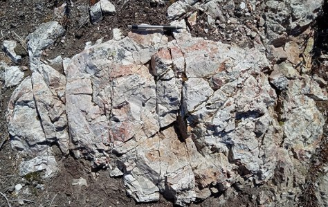 Franz Zone: New Outcrop Discovery