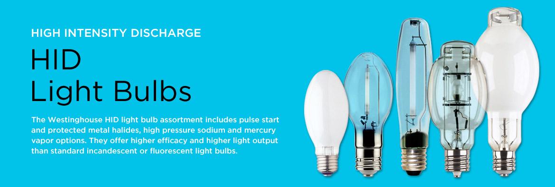 Led Bulb Display