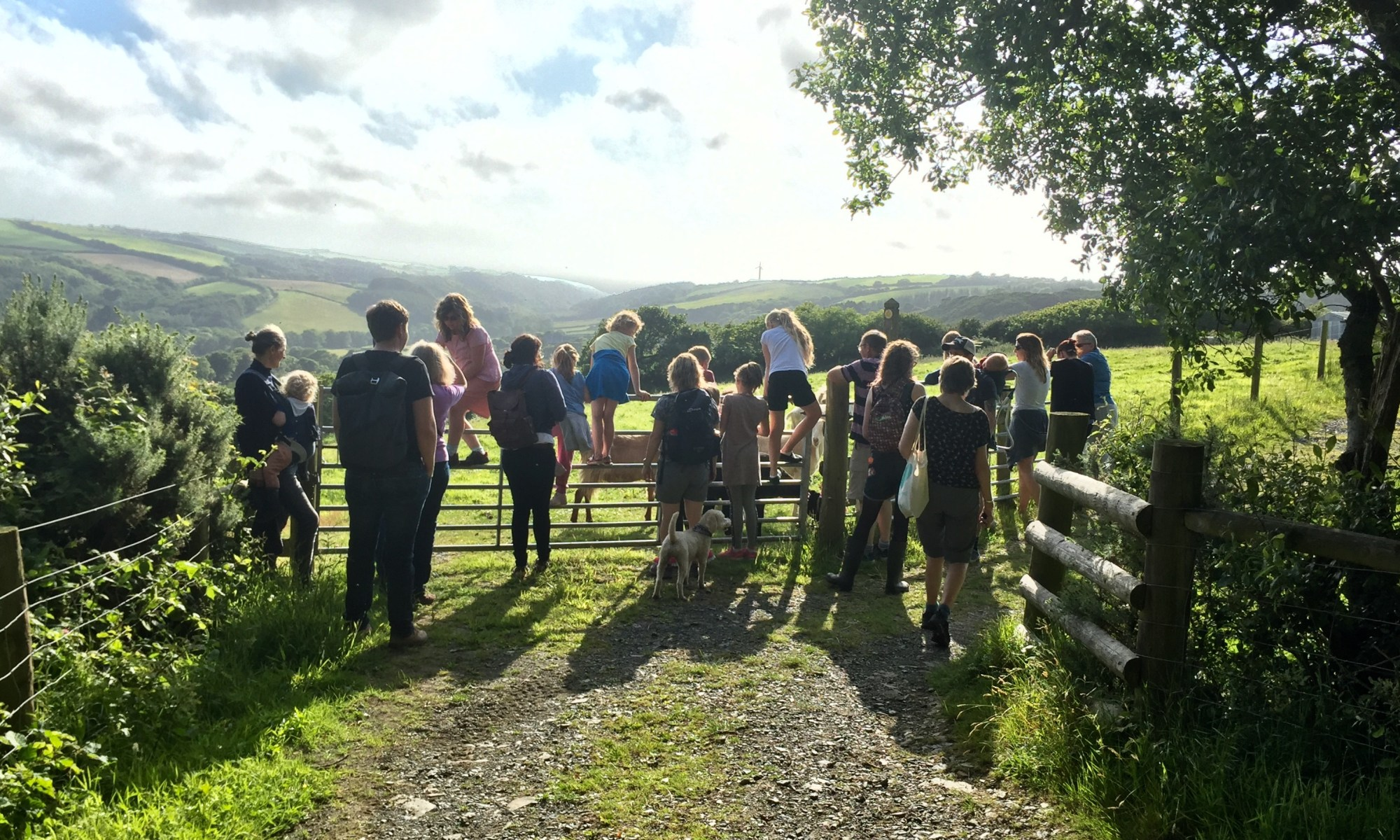 People who joined Westland Countryside Stewards for the charity walk around Kilkhampton Common