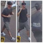 Community Assistance: Identification/Deviant Sexual Act