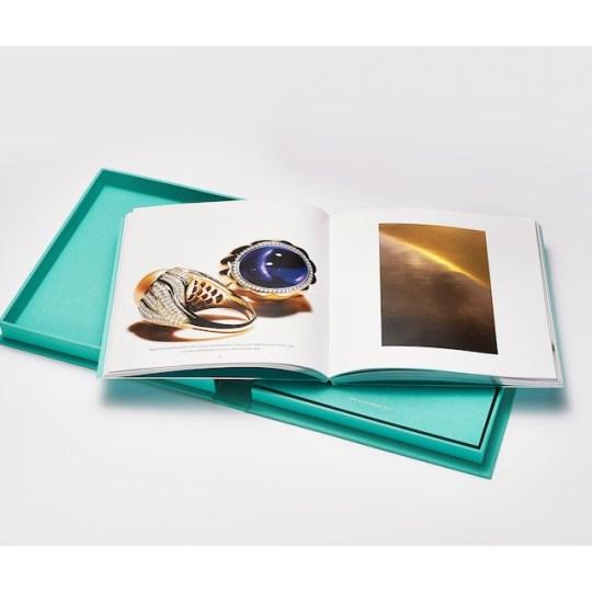 Tiffany-2015-Blue-Bo_3271.jpg