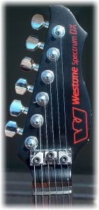 Spectrum DX Headstock Locknut -Mar2
