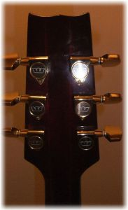 westone rainbow II v2 headstock rear