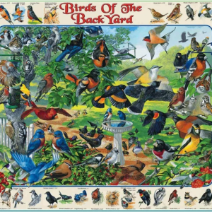 Birds of the Back Yard Puzzle 1000 pc.