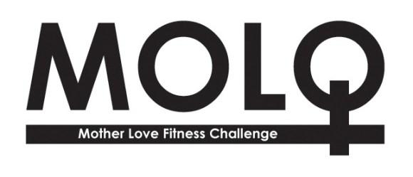 MOLO_2013_logo