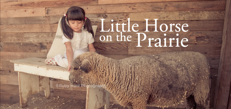 Little Horse on the Prairie is the best interactive animal farm experience in Los Angeles