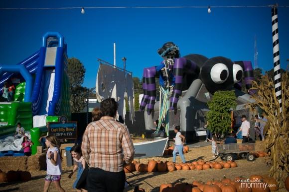 Mr. Bones Pumpkin Patch Culver City