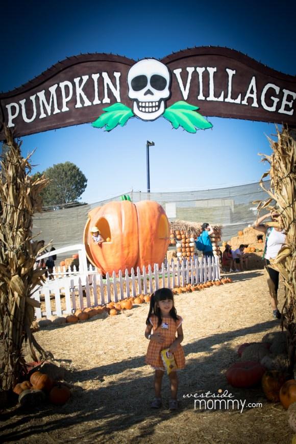 Pumpkin Village at Mr. Bones Pumpkin Patch in Culver City, California. Los Angeles Blogger WestsideMommy.com
