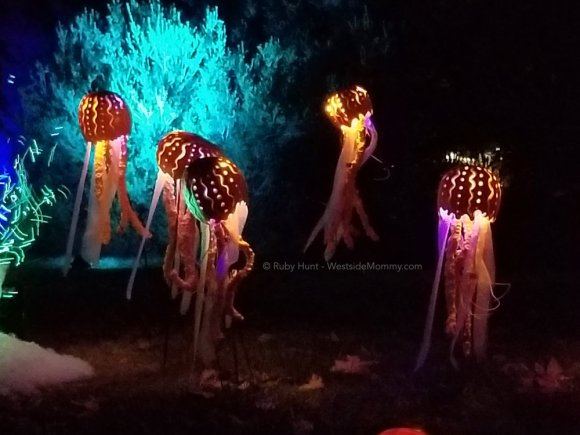 Jellyfish carved Jack O lanterns Nights of the Jack Event in Calabasas, California Post on WestsideMommy.com