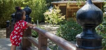 Storrier Sterns Japanese Garden (Pasadena)