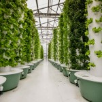 Aquaponics 101 - Styles and Types Aeroponics systems