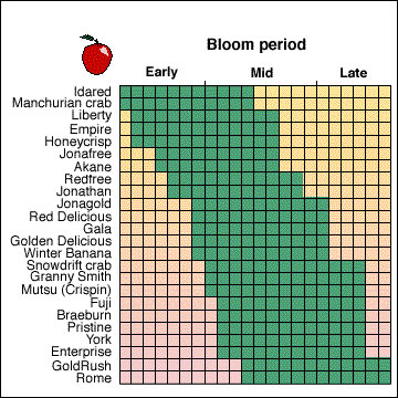 Apple Trees - Bloom Time Chart