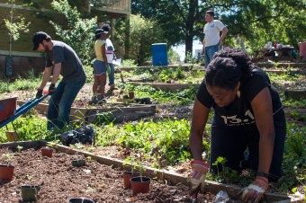 community garden earth day
