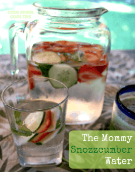 Strawberry Cucumber Mint Water is a refreshing way to stay hydrated this Summer. Check out this recipe and 16 other Flavored Water Recipes by clicking the link! | We Three Shanes