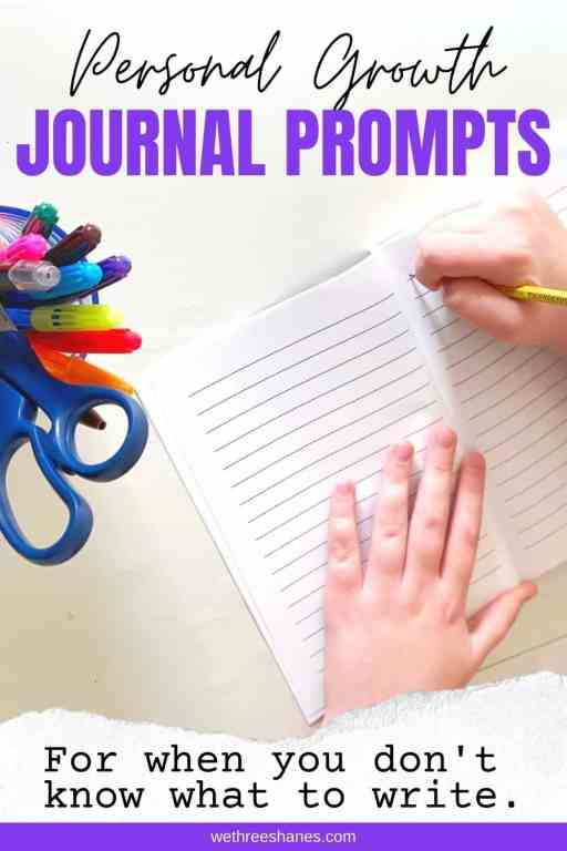 Here are some fun journaling prompts and ideas to keep you motivated and to help you grow more as a person. | We Three Shanes