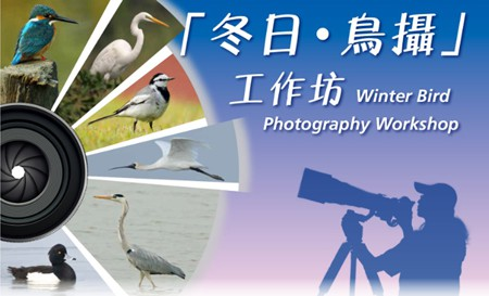 Winter Bird Photography Workshop