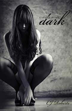 総合評価4星:Captive in the Dark: The Dark Duet #1