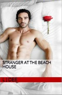 Stranger At The Beach House