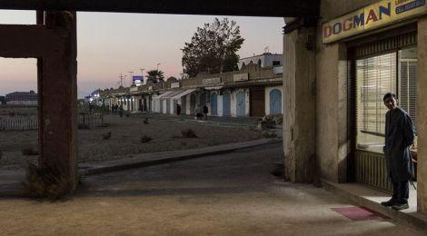 """""""Dogman"""" (Alamode Film) +++Rezension & Gewinnspiel+++"""